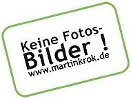 Martin Krok